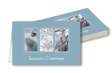 Tilaa joulukoritit pelkillä postikuluilla Vistaprintiltä
